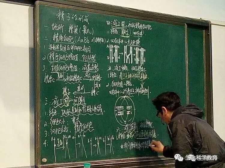 板书教学设计,一名高中生物老师的坚持图片