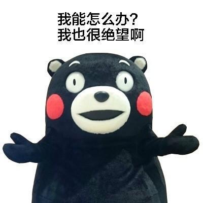 熊本熊表情包我能怎么办系列图片