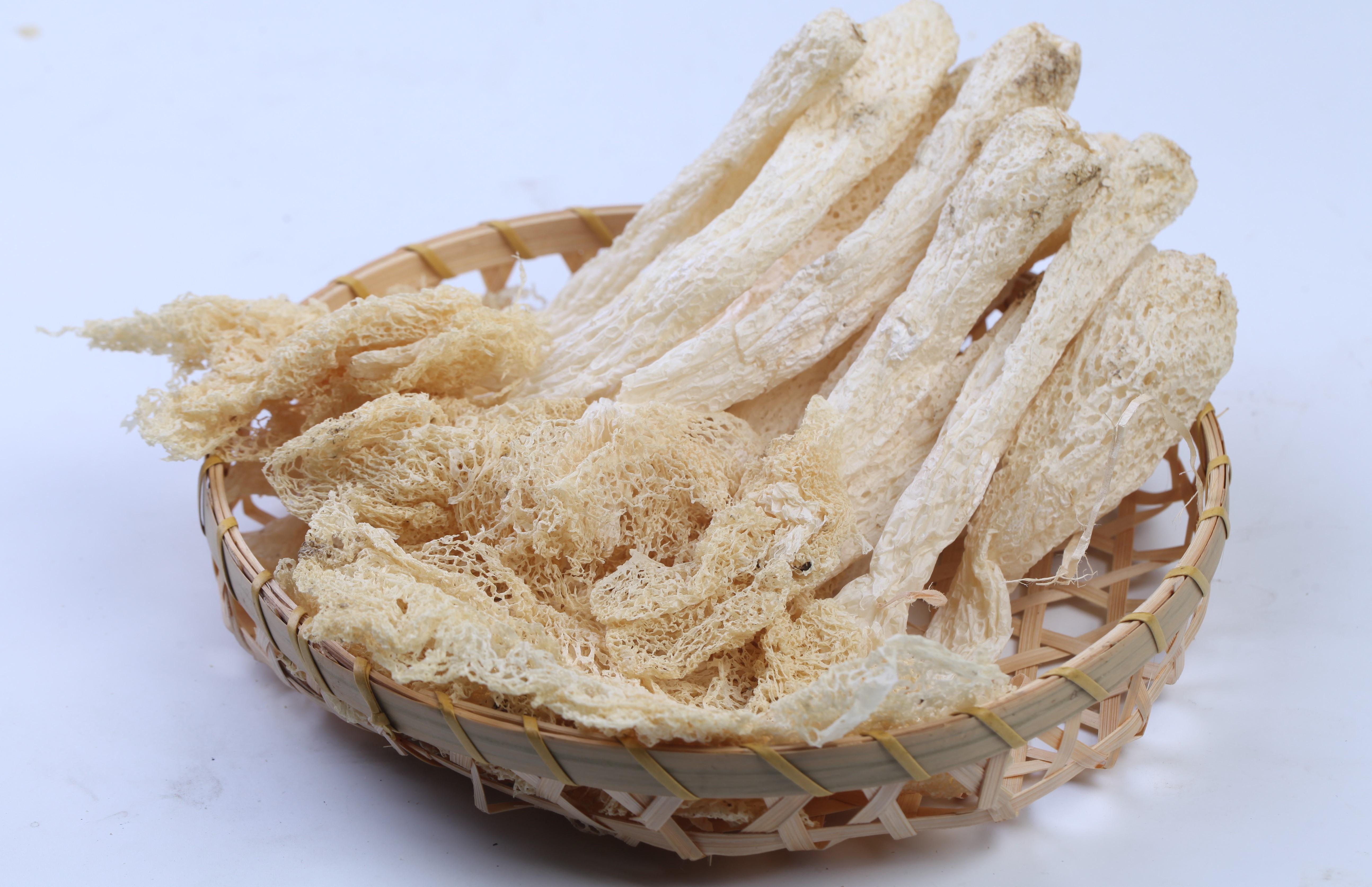 野生羊肚菌生长环境_除了松茸,这些知名野生菌类你认识几种?