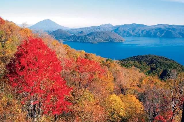 """秋日""""好色""""北海道,唯有红叶,温泉与美味不可辜负图片"""
