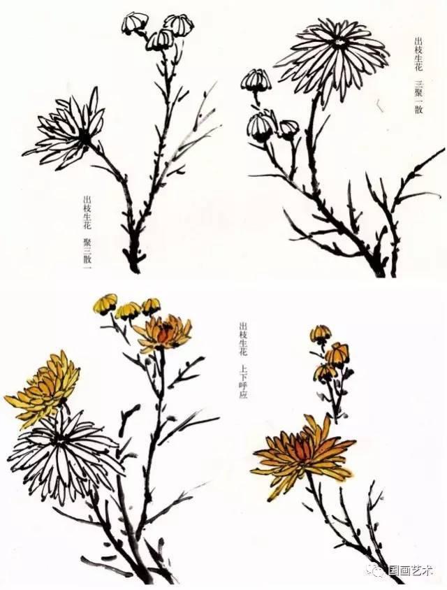 【国画教程】水墨兰菊花步骤画法,太全了(转发收藏)图片