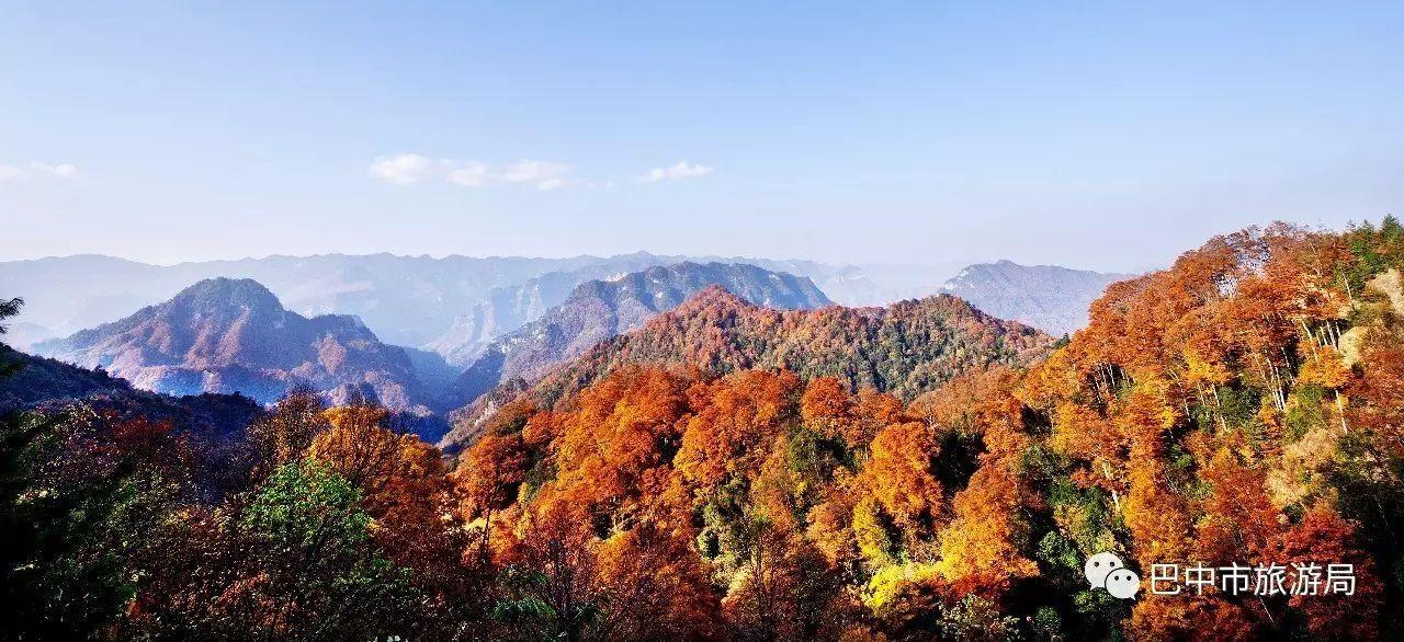"""红叶是光雾山景区的一大独特生态景观和靓丽名片,有""""红叶甲天下""""之图片"""