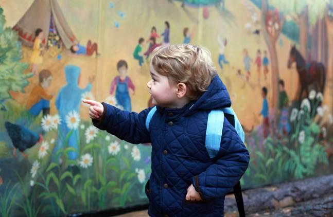 育儿宝典丨我家宝宝比肩英国乔治小王子