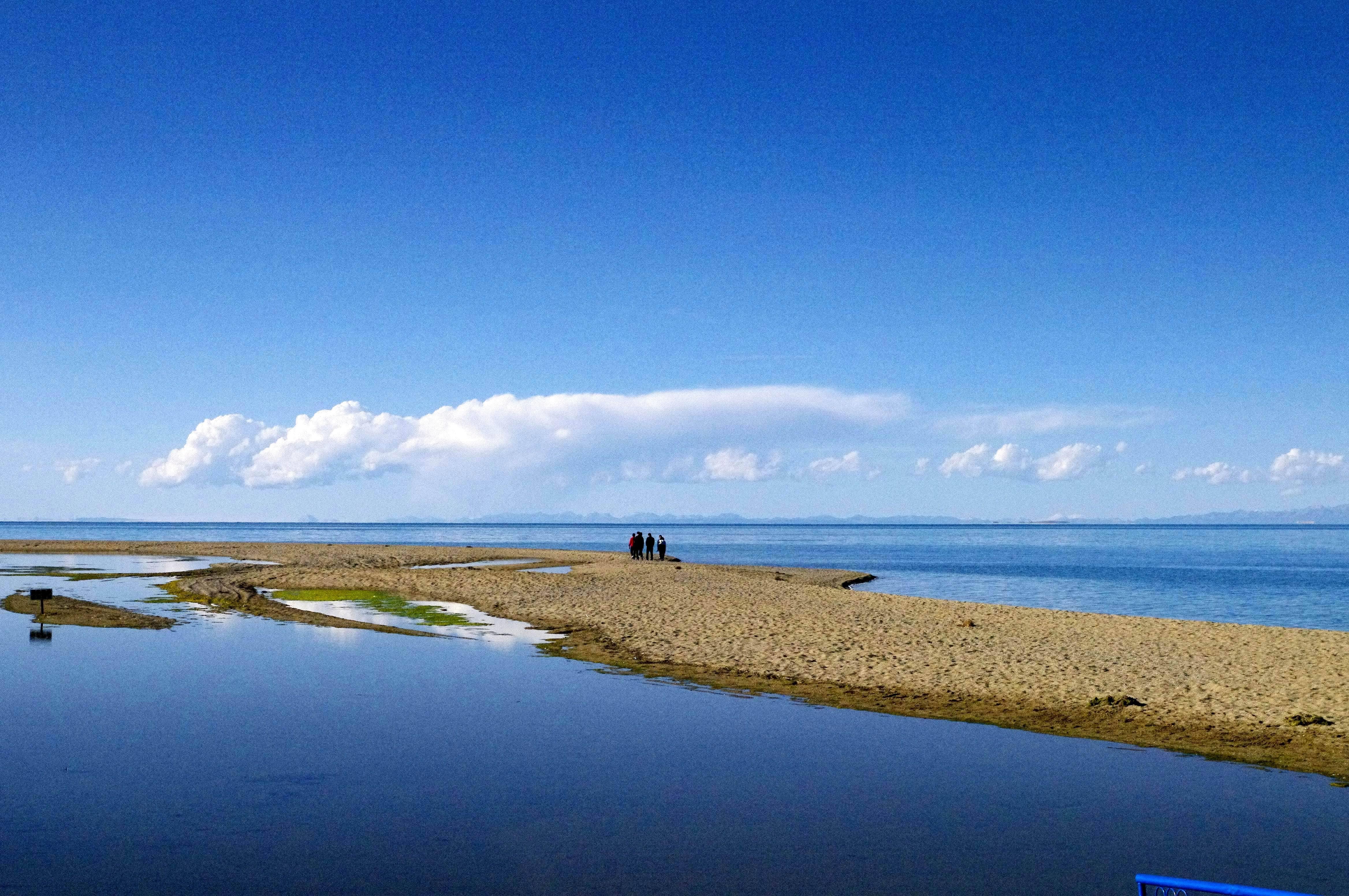 每一个到过青海湖的人,都未曾被辜负