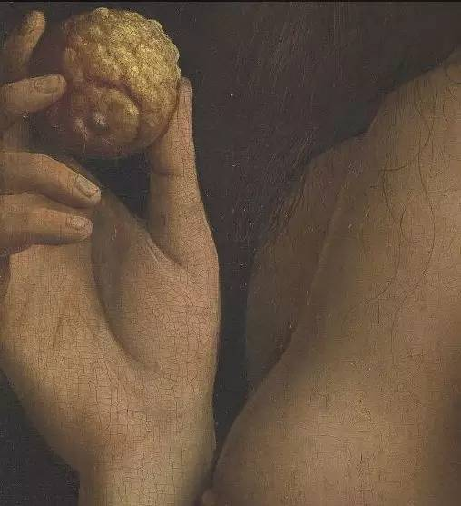 亚当夏娃变形记(上)图片
