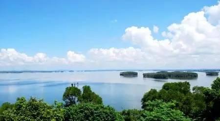 湛江最新城市总体规划公告,遂溪将被纳入主中心