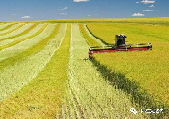农业更需要知识产权的保护!