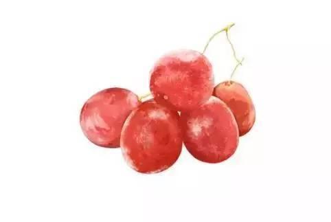 【妈妈厨房】立秋后多吃这8种金牌水果,孩子少生病!聪明的妈妈
