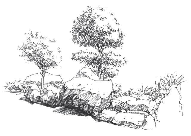 在景观设计手绘中我们简单地把水分成两类:静水和动水.