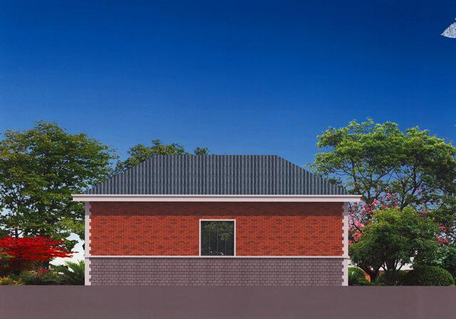 10万建户型一层平房小别墅设计图-农村好,外观如何手绘装修设计图图片