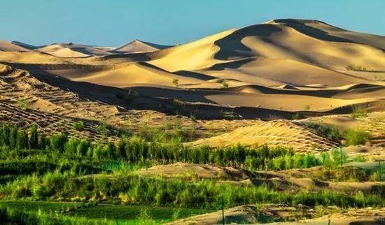 """最新丨全球荒漠化怎么防治?这里有份""""中国方案"""""""