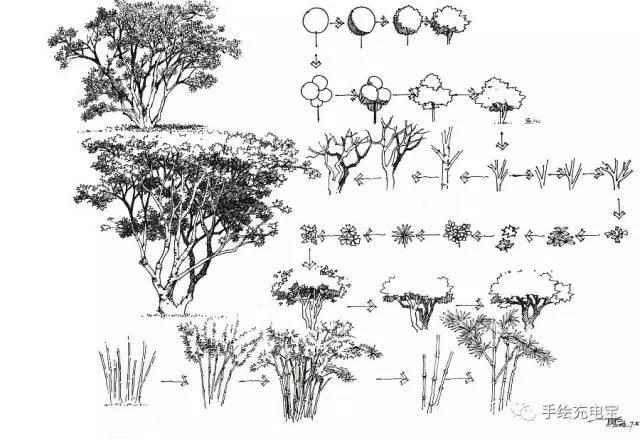 景观手绘的 植物,水景,石头,人物,交通工具,以及平面造型手绘练习大全