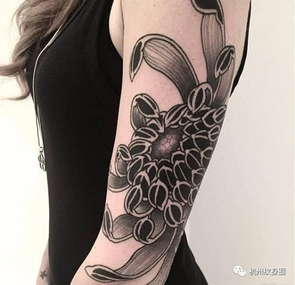 tattoo | 纹身素材:菊花