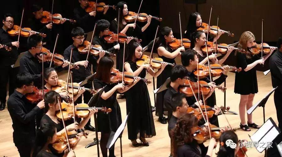 小提琴《山丹丹开花红艳艳》-薛伟演奏图片