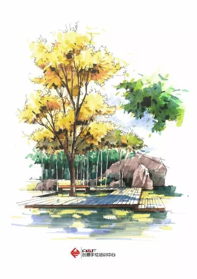 环艺手绘图植物