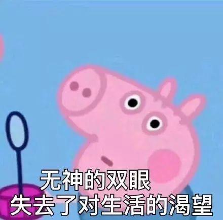 钩针小猪文字图解