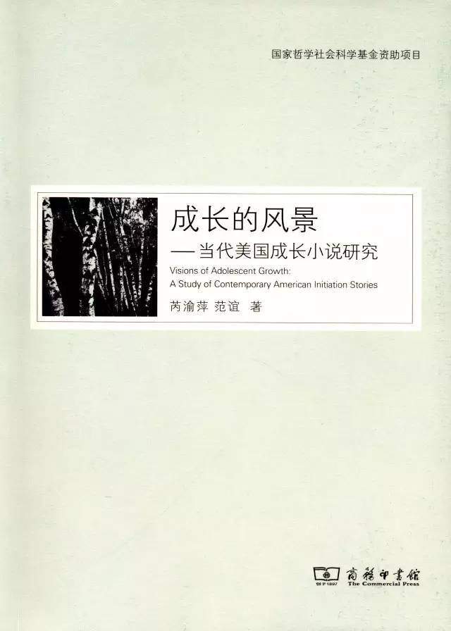 成长小说研究_关于小说的18本书(值得推荐)