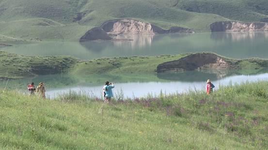 《生财有道》生态中国草原行——唐布拉:香、甜的草原财富