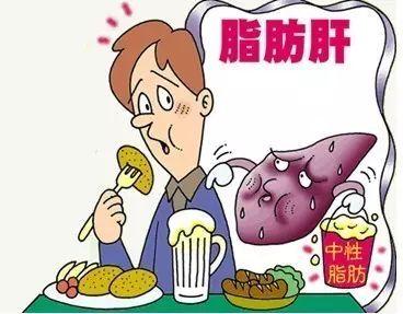 肝 症状 脂肪