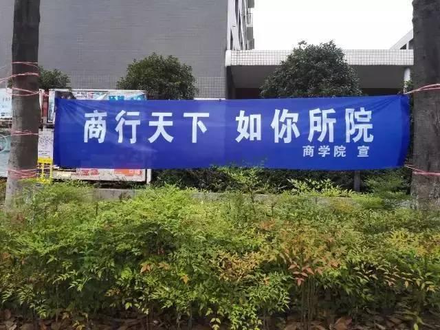 """【生活】开学了,各地大学迎新标语——""""学姐迎新,免费图片"""
