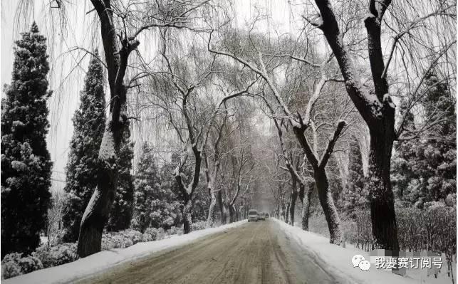山东 魅力唐王 最美乡村 首届济南唐王半程马拉松赛 开启报名图片