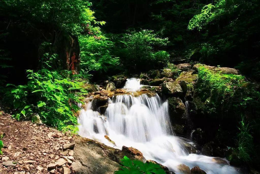 十一游 | 临江金银峡风景区,岭上枫林两日游,特价398元!