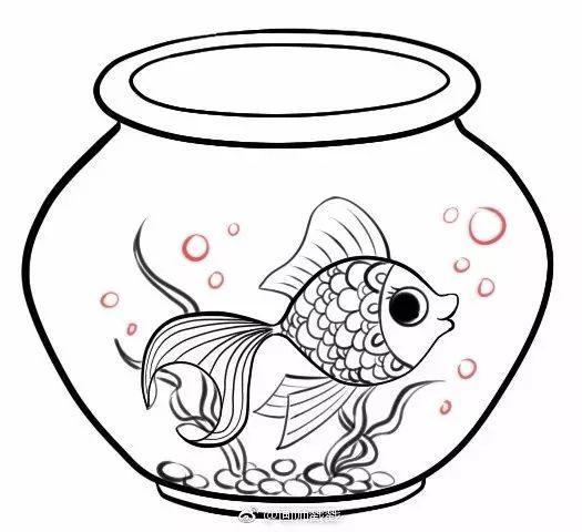 简笔画下教程 鱼缸里的小金鱼图片