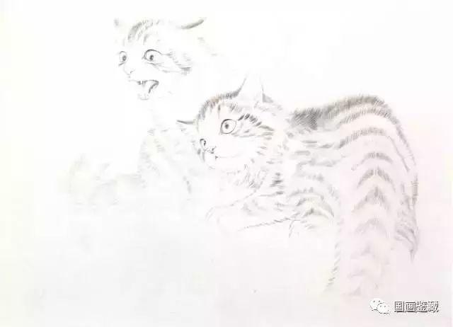 工笔画自学入门:工笔猫画法步骤图文教程