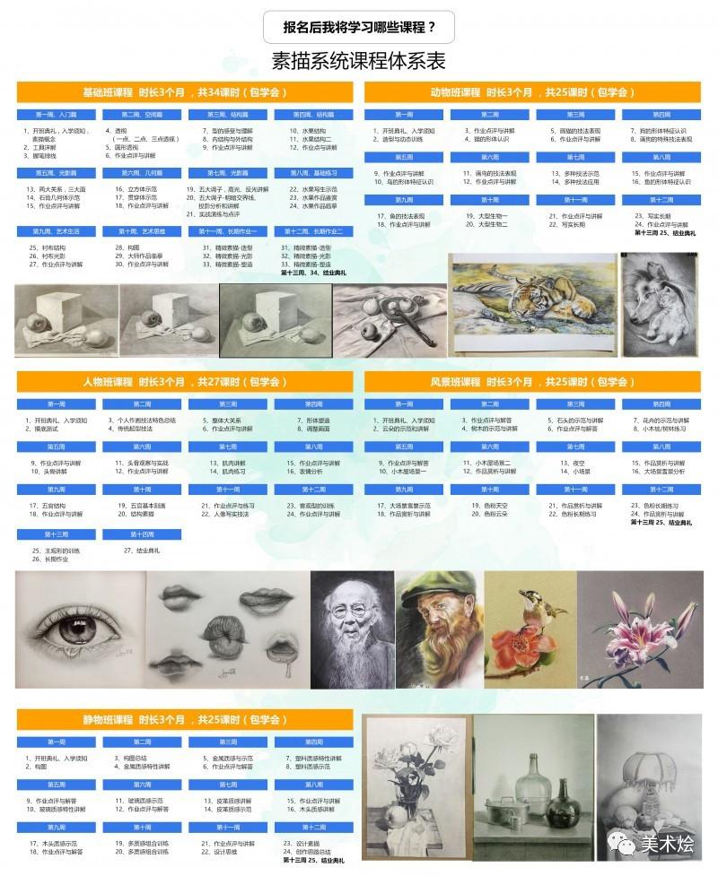 素描教程:素描画百合花步骤图解