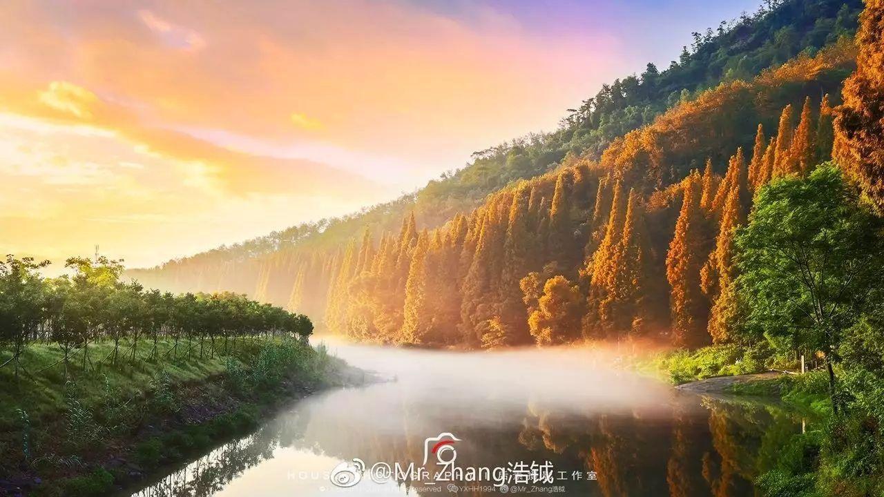 万众瞩目 2017浦江第十届中国书画节来啦!图片