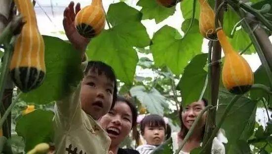 摘果 泡温泉国庆中秋假期来重庆,160余个活动让你玩个够