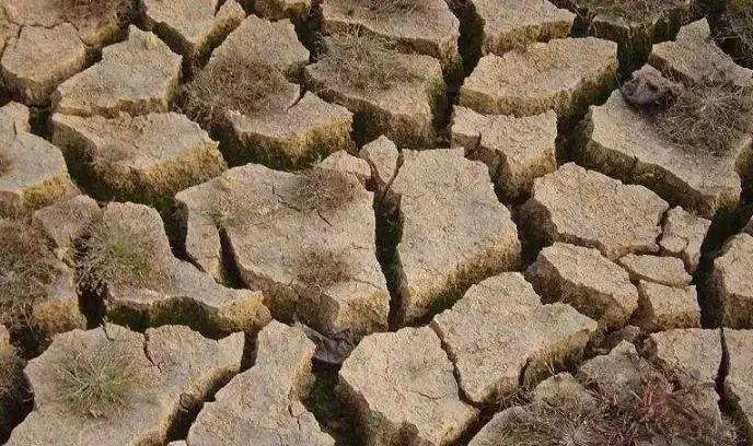 向土壤中施入有机肥料或微生物财运,逐步恢复肥料中有益微生物群落中孚卦详解土壤图片