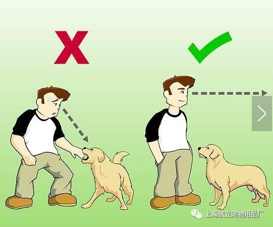 站着卡通兔子矢量图