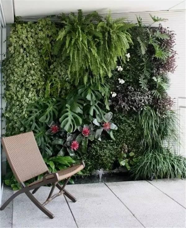 花墙 景观 盆景 盆栽 墙 植物 600_736