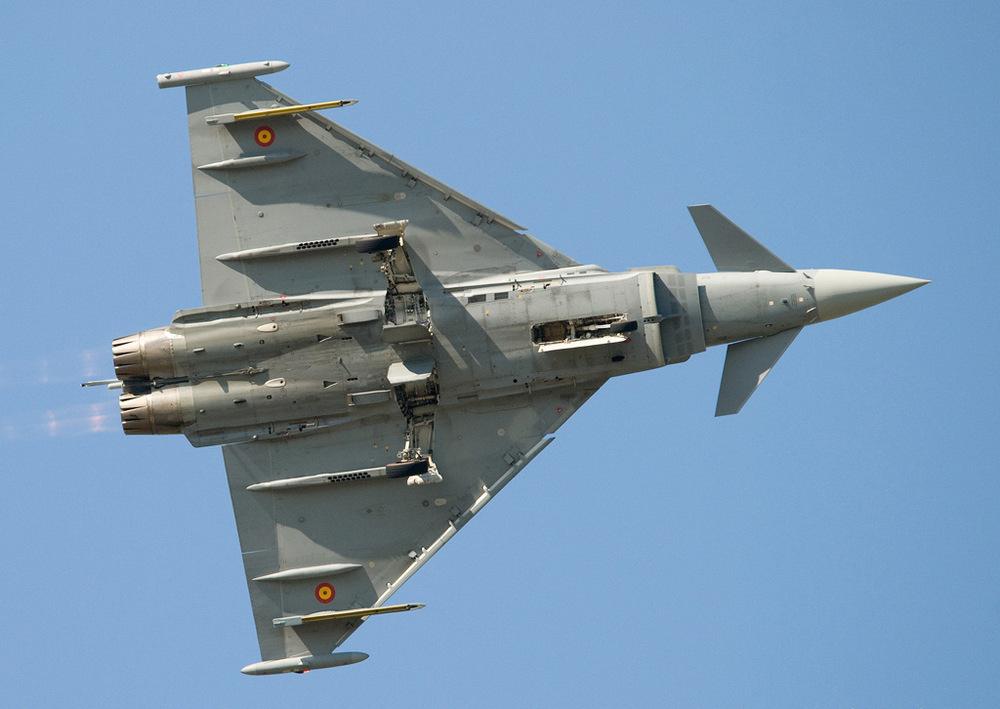 欧洲这一战机与j10一样,采用鸭式布局图片