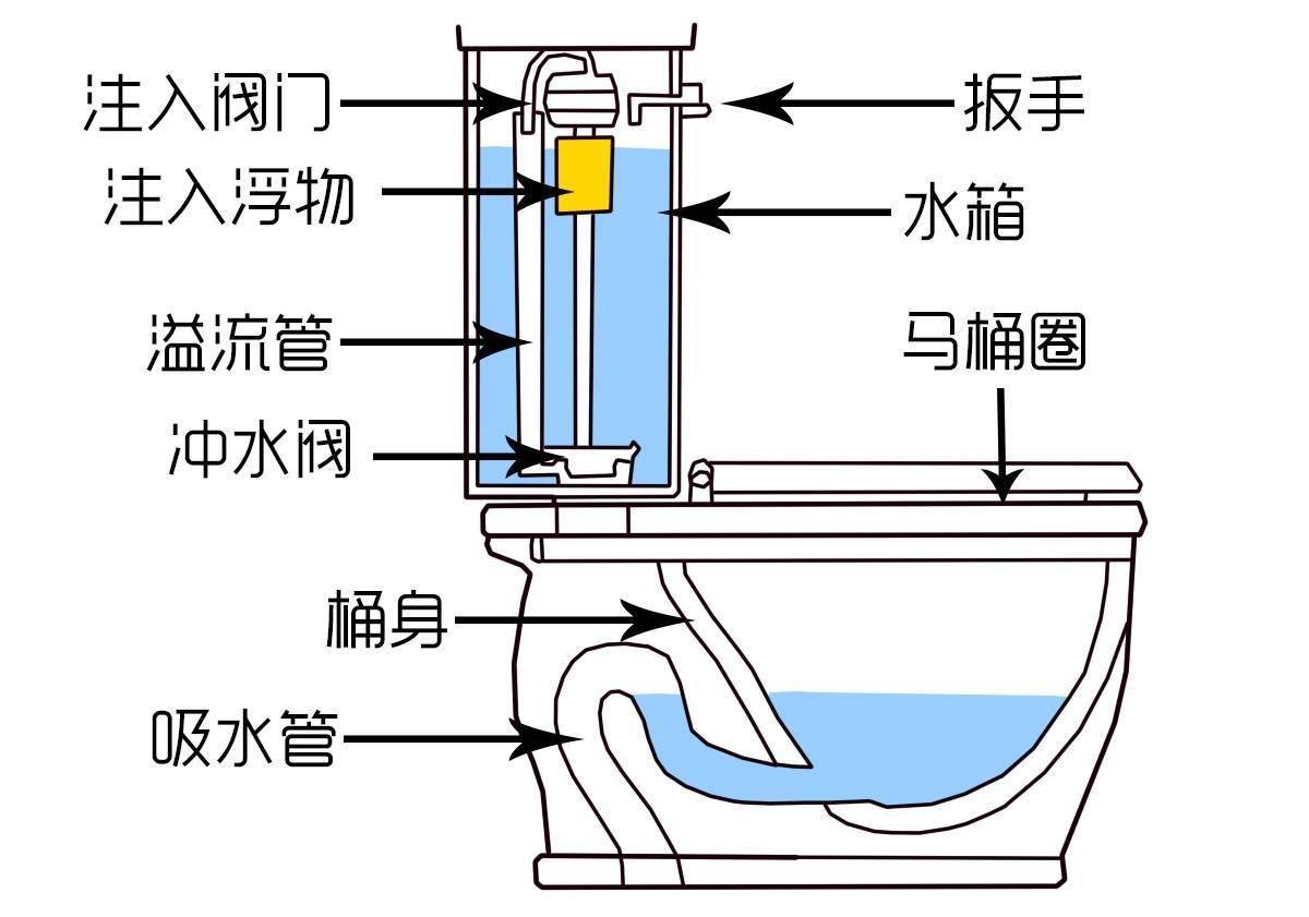 马桶上的冲水按钮,99 的人都按错了 这么多年的厕所白上了