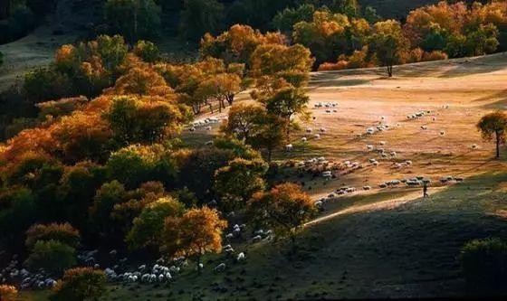 旅游 正文  蛤蟆坝景区:位于河北与内蒙古交界的克旗乌兰布统境内,是