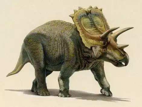 """现实版的""""侏罗纪公园"""" 给你一个不一样的刺激体验 霸王龙,又名暴龙"""