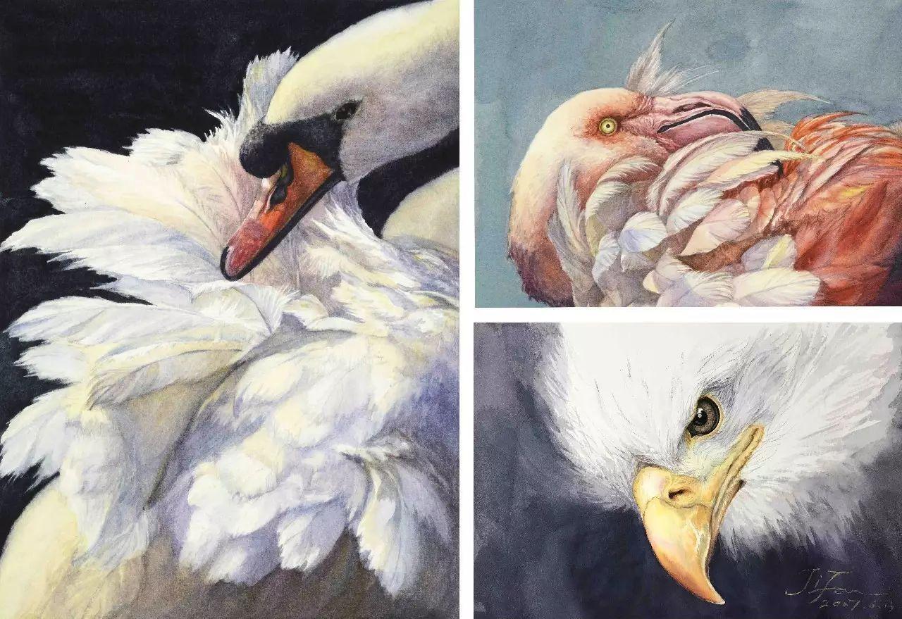 丑小鸭穿越变白天鹅_丑小鸭穿越变白天鹅最新章节_... -汤圆创作