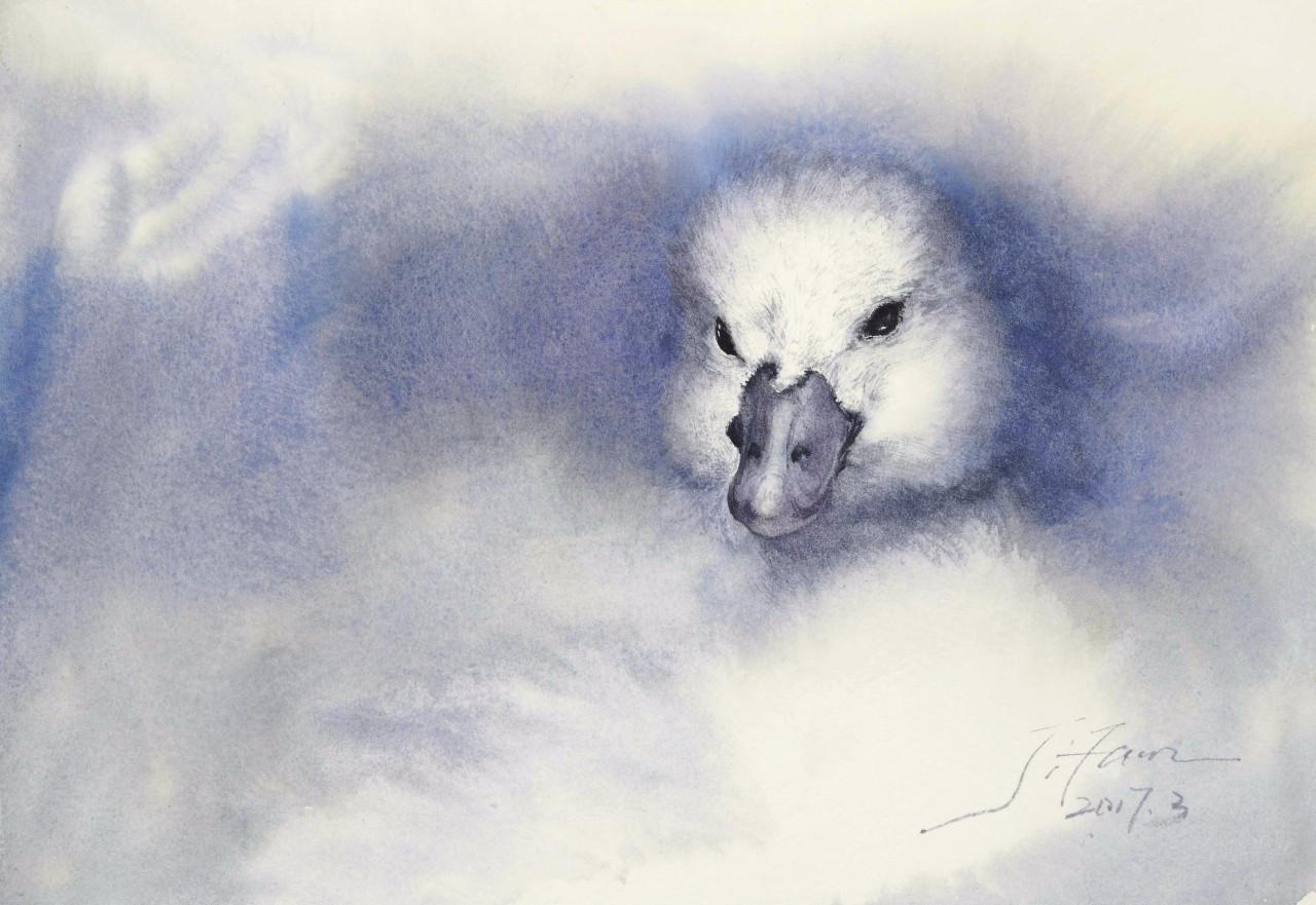 小说:女人被豪门选中,现代版的丑小鸭变白天鹅,这就是命运