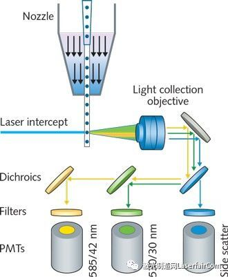 激光在生物科学中的应用:Novel极紫外线nm激光源增强流式细胞术