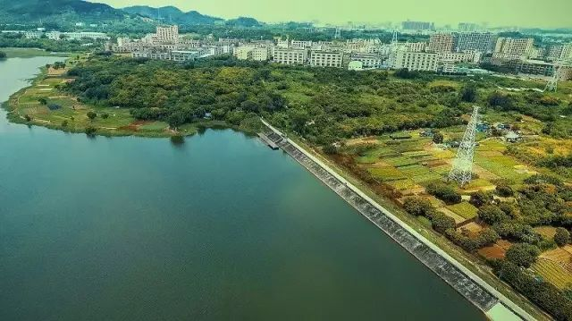 【中国梦 深圳行】明湖城市公园将建2.