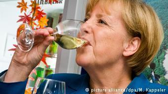 选举日:德国各党候选人都干些什么?