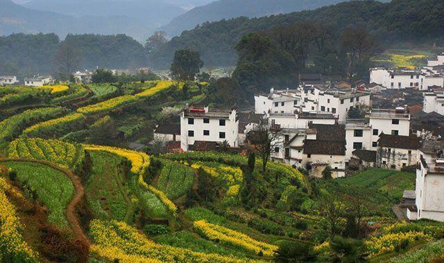 一到秋天,位于江西的这个这个县城又该惊艳了