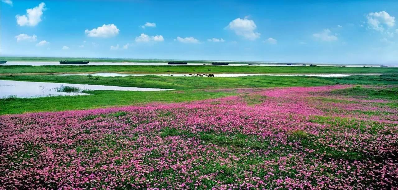 中国最美水上高速公路低调了7年才惊艳于世