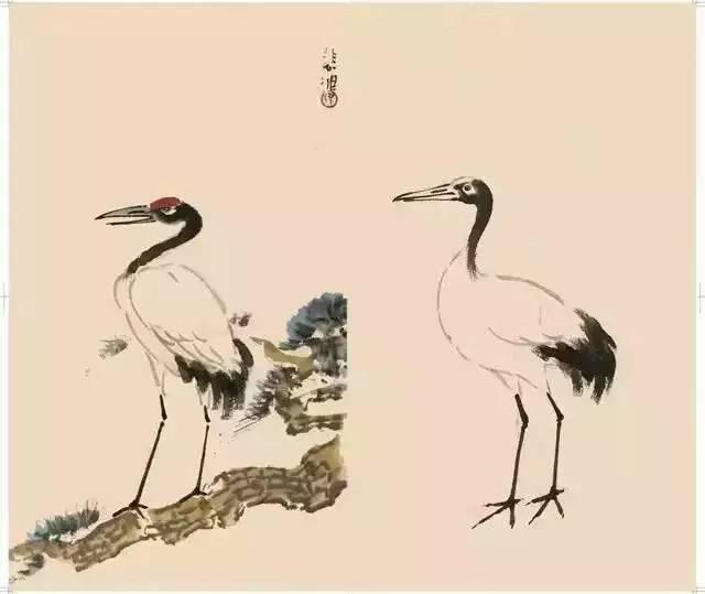 """徐悲鸿""""手把手""""教你画花鸟,很珍贵的教材!"""