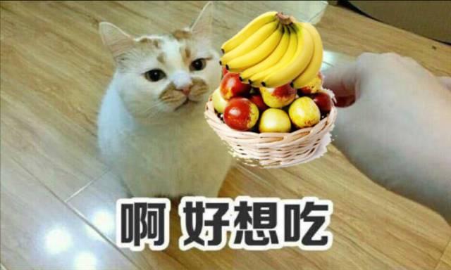 听说香蕉配枣能召唤人生走马灯?我们试了一