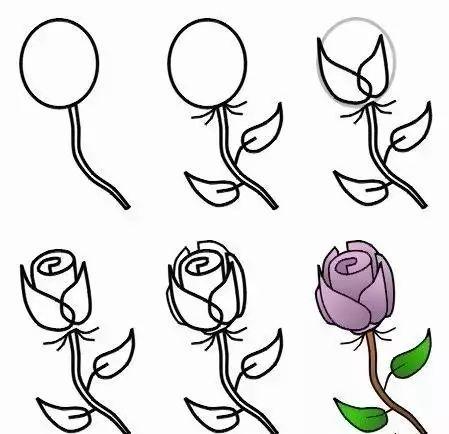 每日一画 3种 玫瑰花 画法教程,打动女神的心