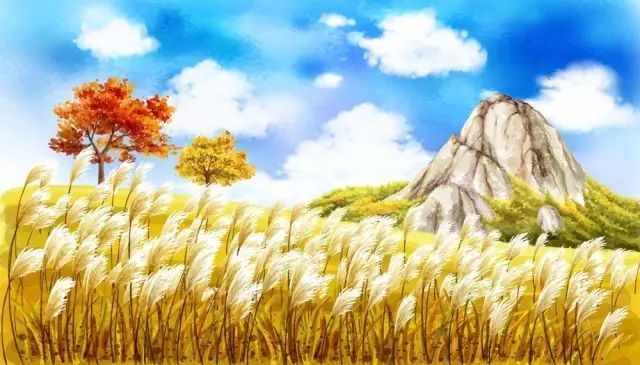 关于秋天的好词、好句、好段、好诗!