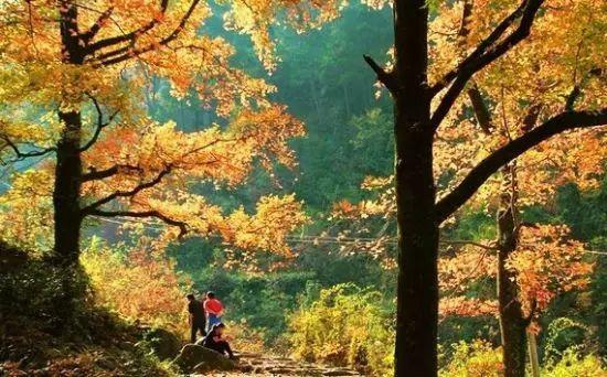 十一安排丨藏匿在秋天里的11个清净小镇